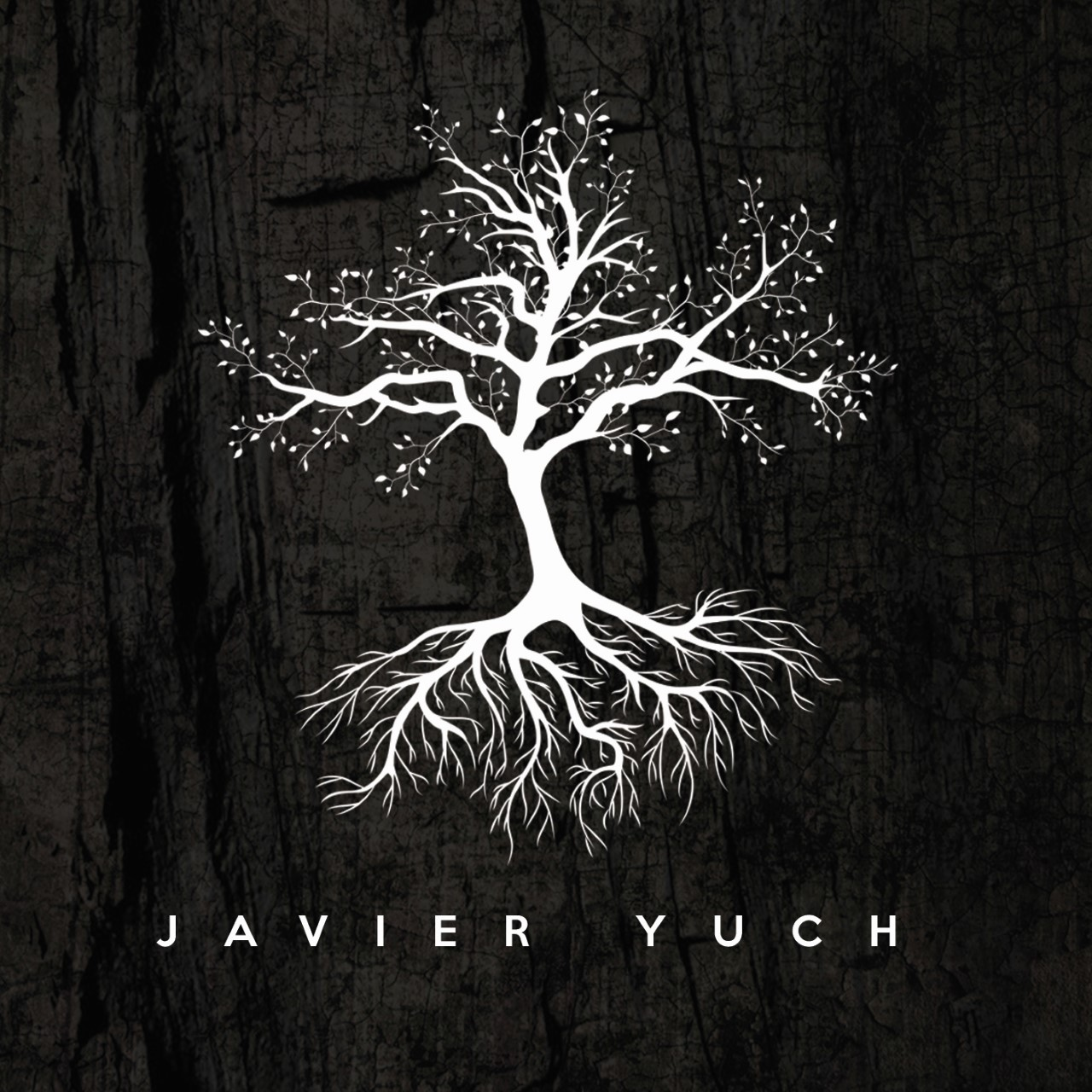 Sello Discográfico - Productora Musical - Javier Yuch